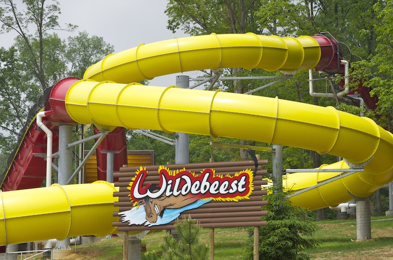 Wildebeest Named Top Water Park Ride Holiday World Voted World's Cleanest Park